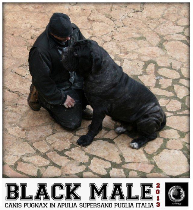 maschietti-in-nero-3