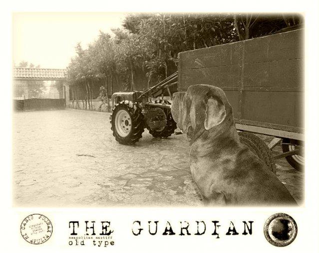 1-il-guardiano-della-pioggia