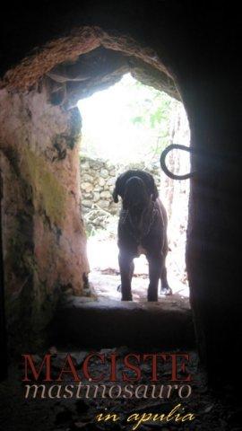 la caverna della sibilla