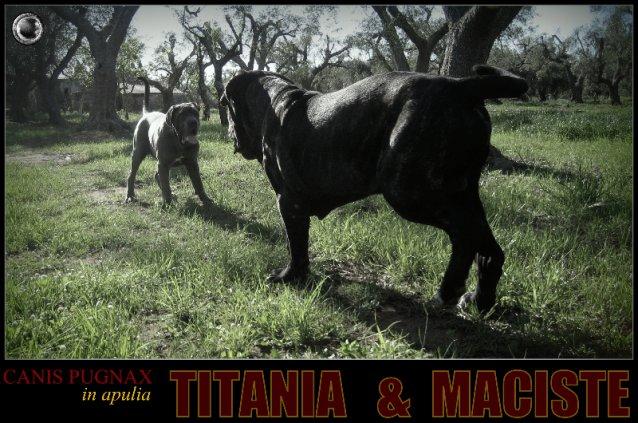 maciste-e-titania