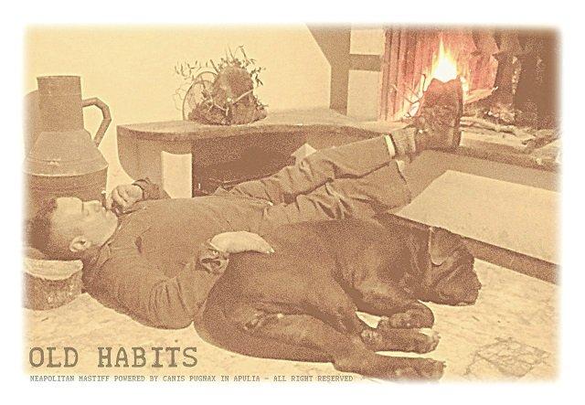 vecchie-abitudini