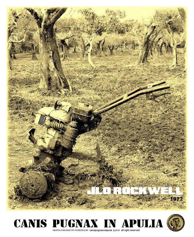 jlo-rockwell-1972-1