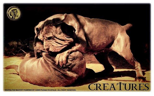 creatures-001