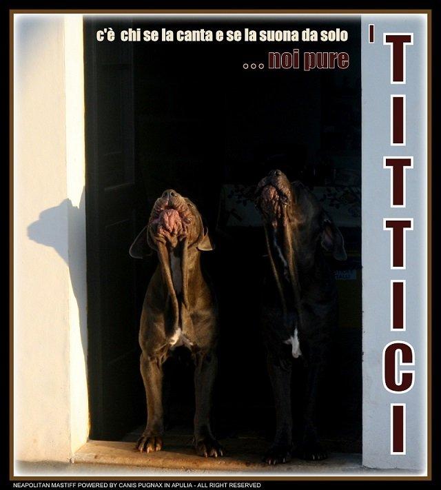i-tittici-1