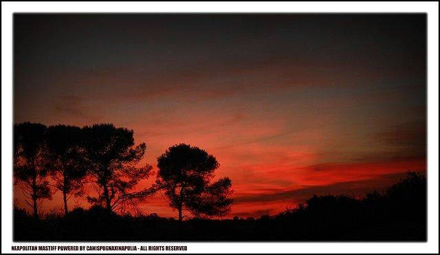 tramonto-sallentino