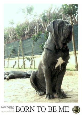 canis-pugnax-5