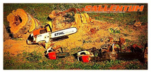 sallentum-1