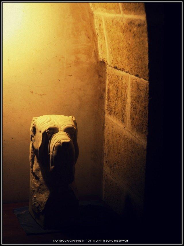mastino-arcaico