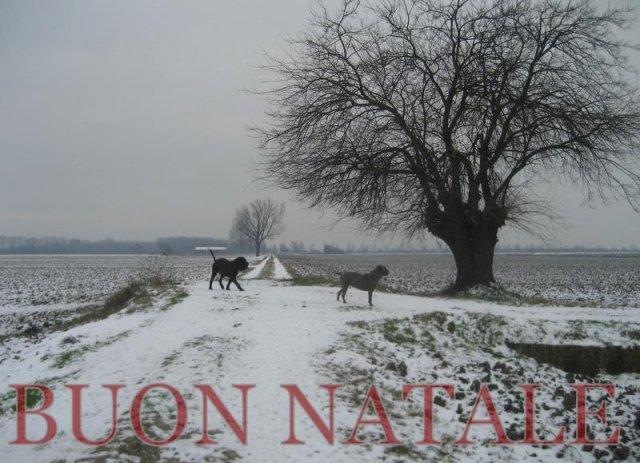 natale-2010