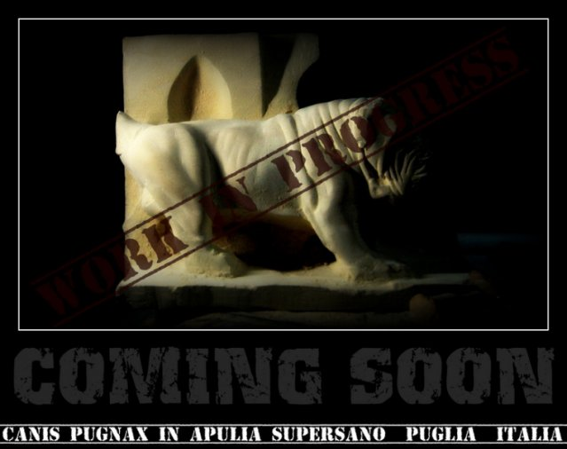 coming-soon_0