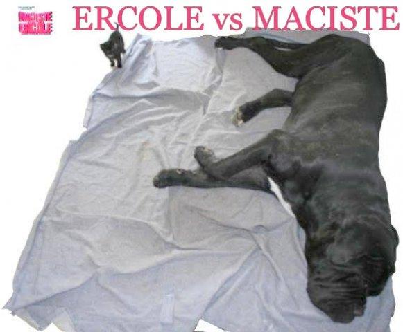 ercolino-vs-maciste