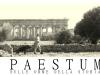 mastino-napoletano-a-paestum-1