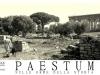 mastino-napoletano-a-paestum-2