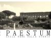 mastino-napoletano-a-paestum-3