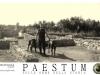 mastino-napoletano-a-paestum-6